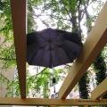 Beim Kräuterpflanzen - Regenschirm auf Pergola