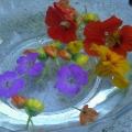 Mariahilfer Ruhe- und Therapiepark - bunte Sommerblumen in einer Glasschuessel mit wasser