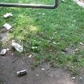 Verschmutzungen im Park am 14. Juni 2010