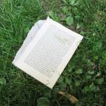 Ruhepark Aktion Buch im Park Vandalismus